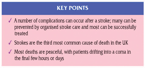 keypoints stroke 7